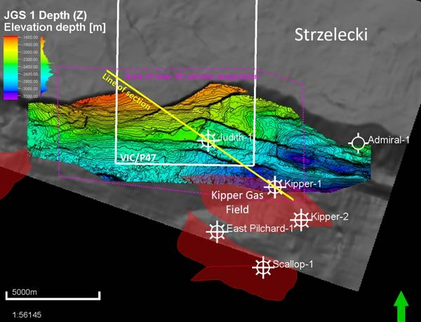 Figure 1: Map showing Vic/P47 Exploration Permit boundary (White line), EMP licensed area of new seismic acquisition (Purple line) and Line of Seismic Section (Yellow line) shown in Figure 2